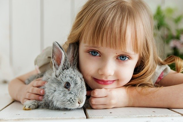 Rabbit Veterinarian in Fort Worth, TX